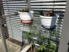 Balkon-Terrassen-Gewächshaus Regalboden